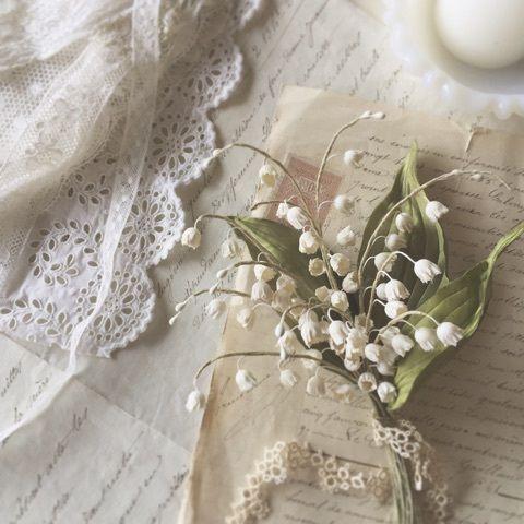 オールドローズとピンクアナベル モッコウバラ オールド ローズ 美しい花