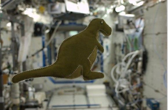 Dinosaurs In Space While On The Iss Astronaut Karen Nyberg Made