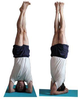 parsva sirsasana  iyengar yoga yoga thoughts yoga