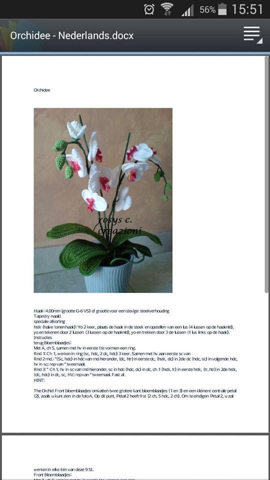 Orchidee Patroon Haken Crochet Flowers Crochet En Amigurumi
