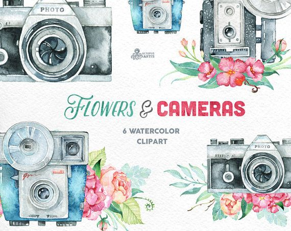 Flowers Cameras 6 Handpainted Clipart Invitation Etsy Clip Art Hand Painted Wedding Elements