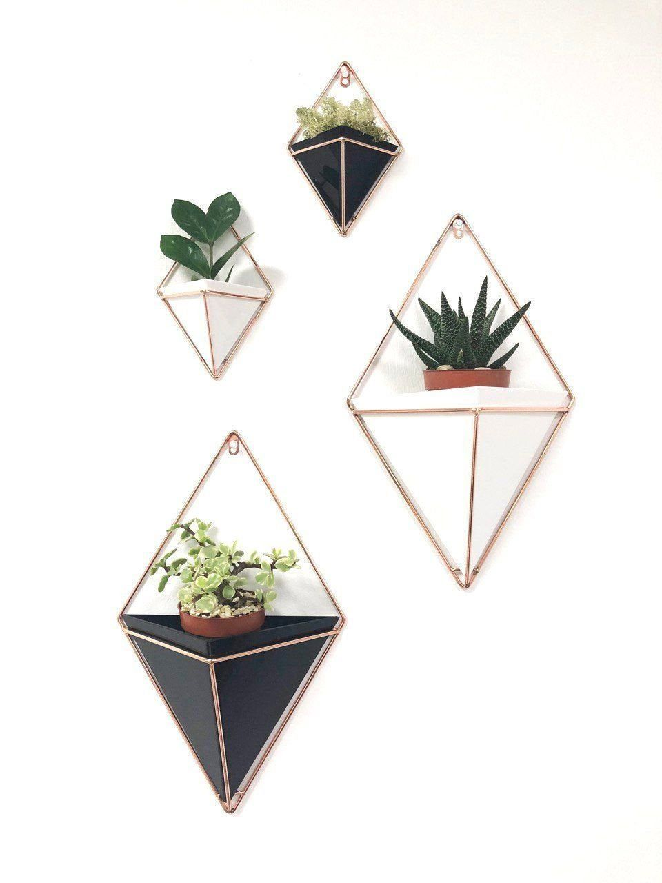 Geometric Wall Planter Indoor Geometric Planter Wall Hanging Planter Hanging Terrarium Wa Geometric Wall Planter Indoor Geometric Planter Wall Hanging Planter Hanging Ter...