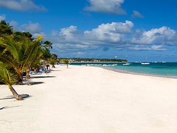 IFA Villas Bavaro Resort & Spa, Punta Cana- nonstop flights from Buffalo through Vacation Express.com