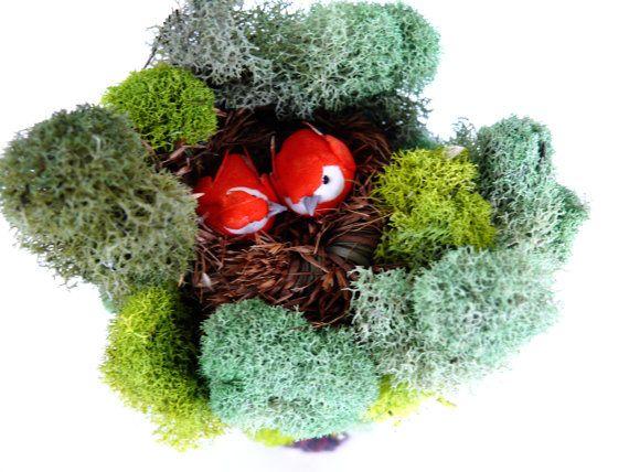 Miniature Fairy Garden Love Bird Nesting Tree