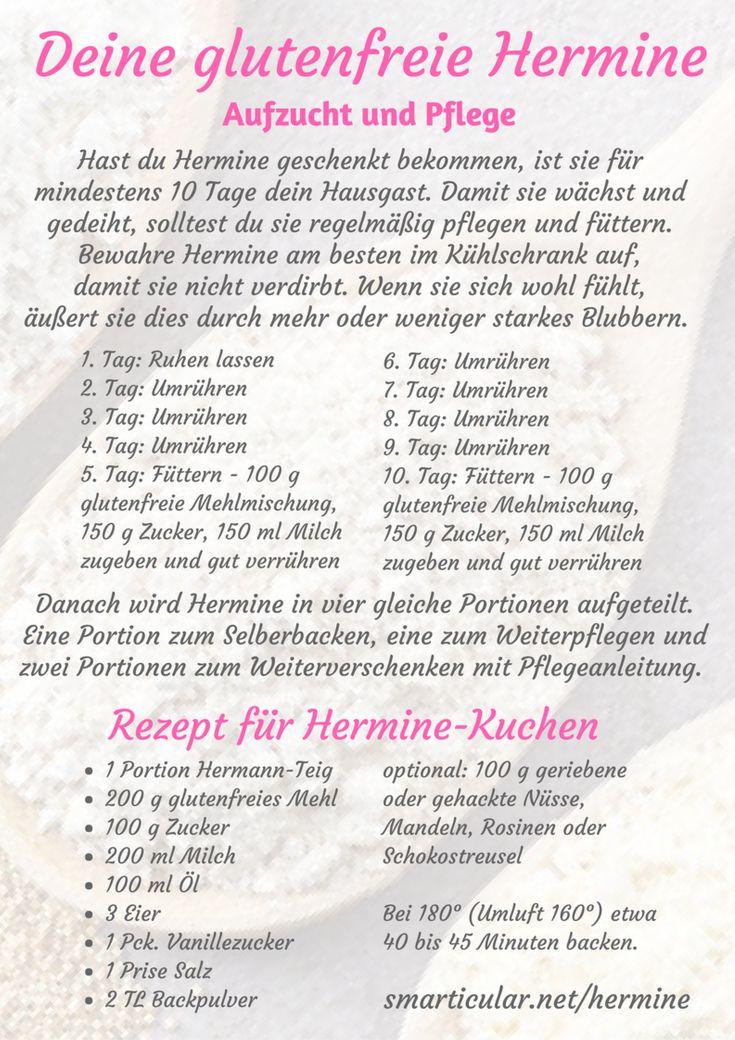 Hermine Die Glutenfreie Schwester Des Hermann Teigs Backen