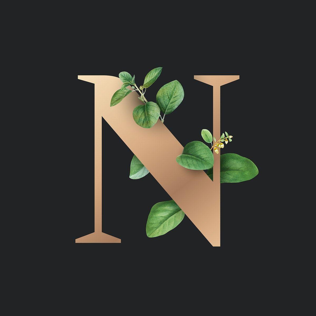 Download Premium Vector Of Botanical Capital Letter N Vector 584857 Harfleme Balonlar Logo Tasarimi