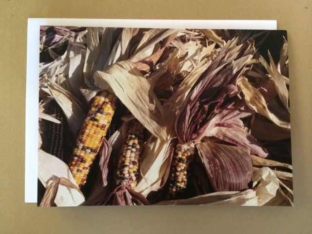 5x7 greeting card (14 PT card stock, matte finish, blank inside) #maize #corn #harvest #country