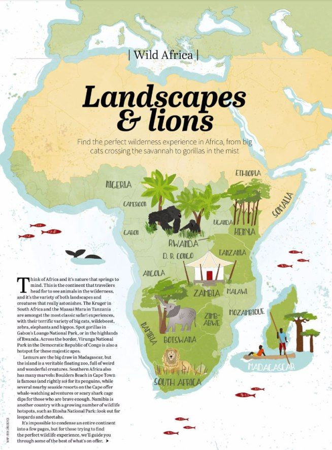 Botswana South Africa Map.Illustrated Map Of Wild Places To Visit In Africa Rwanda Botswana