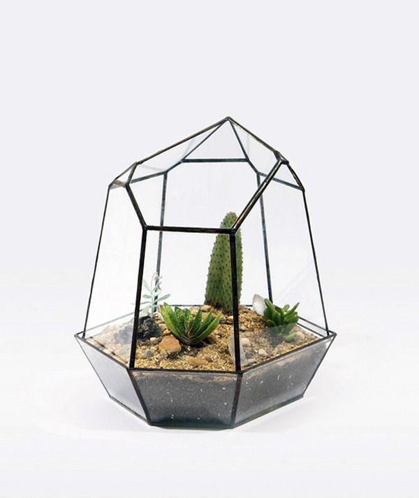 Elegant Suspendre Et Plantes à La Main De Table Terrariums Créés Par Matthew  Cleland De Score + Ideas
