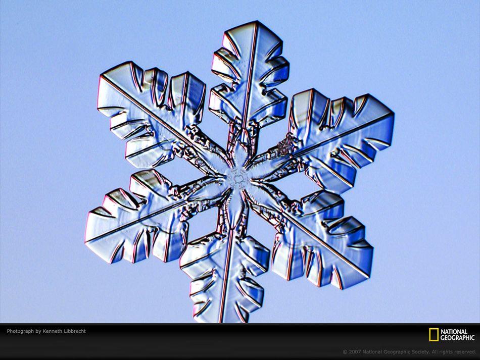 Fiocchi di neve e cristalli di ghiaccio nelle grandi foto della settimana