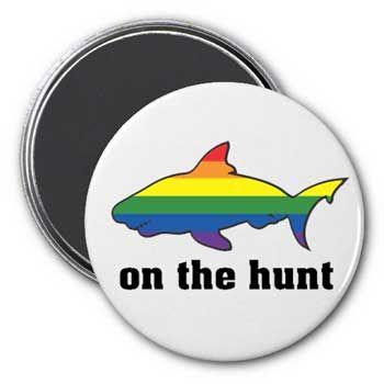 Gay rainbow fish magnet