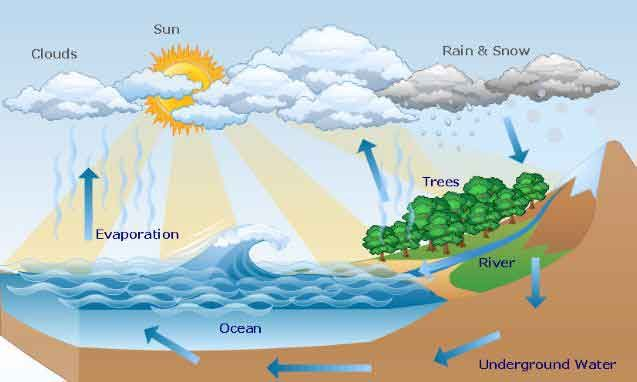 how does the water cycle work?- explanation – education enlightenment