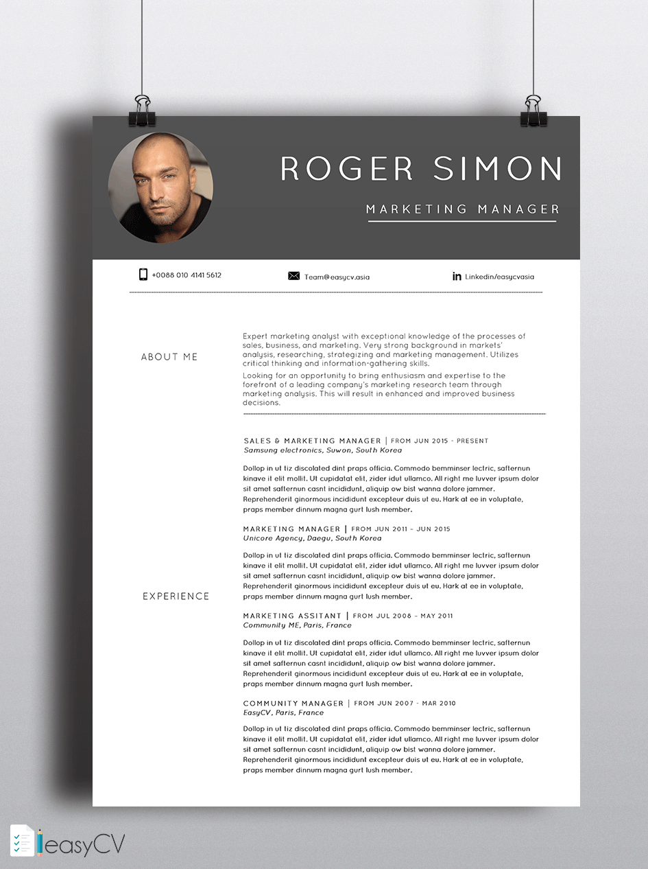 Pin By Easycv On Template Cv    Cv Resume Template And
