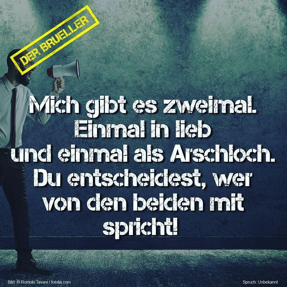 arschloch sprüche arschloch #arschlöcher #arschlochmodus #zweimal #lieb #spruch  arschloch sprüche