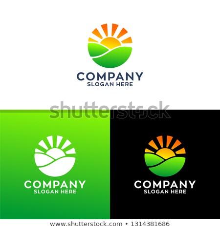Sunshine Logo Design Shutterstock Premier Sunshine Logo Logo Design Logos