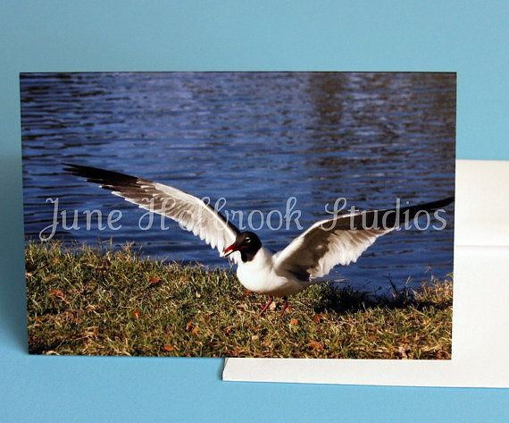 Photo Blank 4 x 6 Note Cards with Envelopes  Sea by MomsTreasures