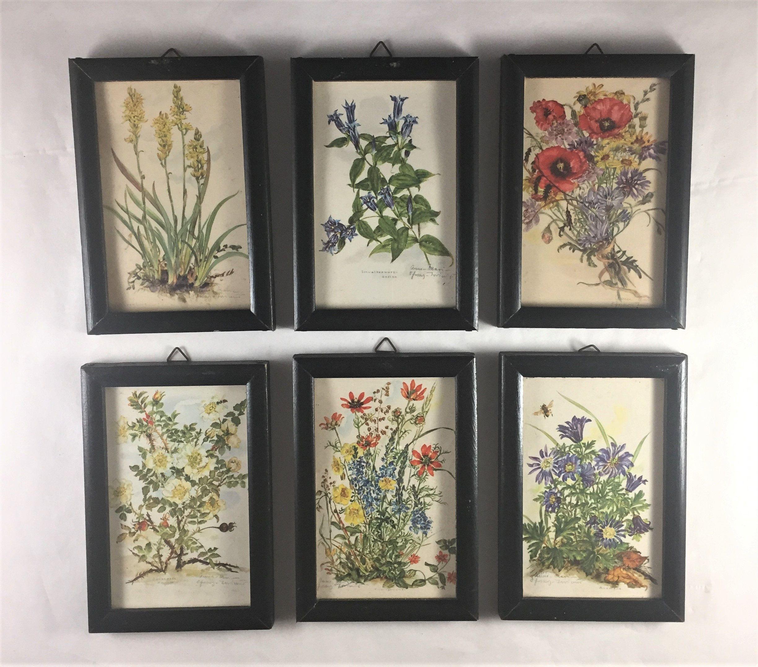 Vintage Botanical Prints Set Of 6 Floral Framed Prints Small Vintage Prints Colorful Framed Wall Framed Floral Prints Botanical Prints Vintage Botanical Prints