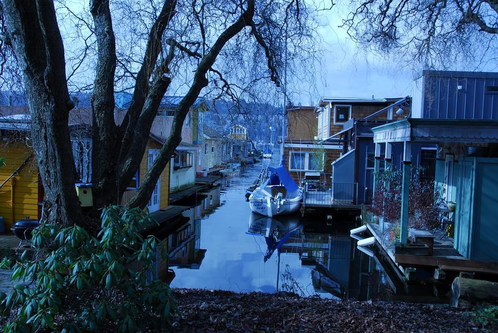Seattle Houseboats In The Blue Grey Of Winter Http://www.SeattleAfloat.