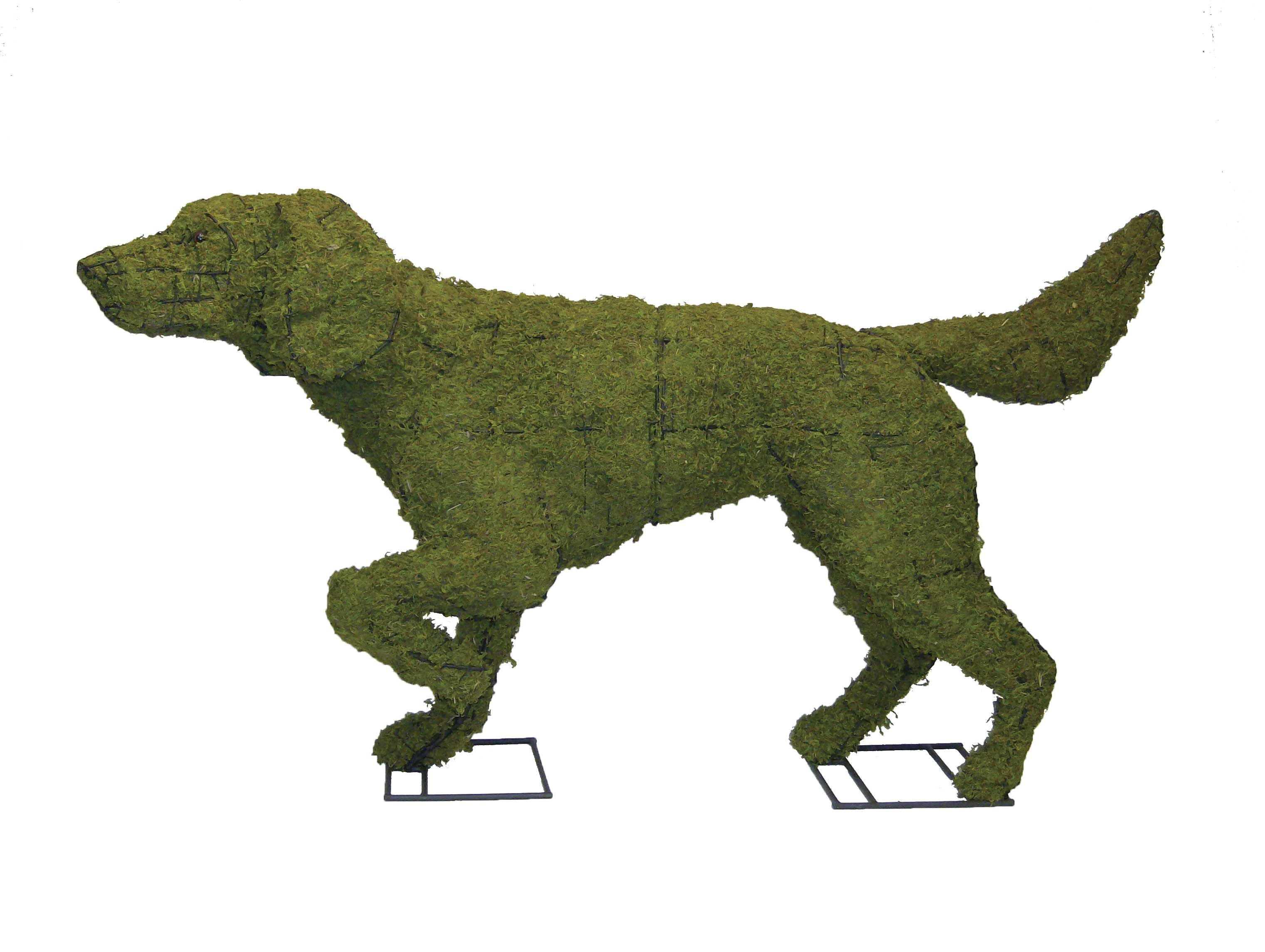 Topiary Sculpture Filled With Lush Sphagnum Moss Suitable For Planting