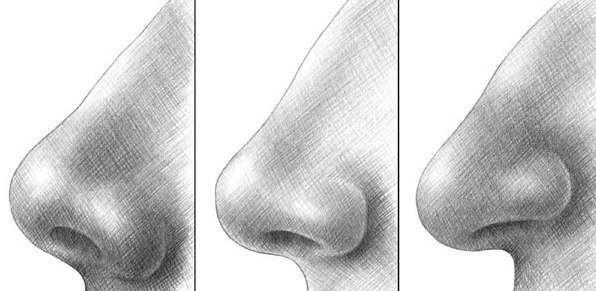 Wissen Sie Dass Die Nase Ist Das Leichteste Gesichtsteil Zum