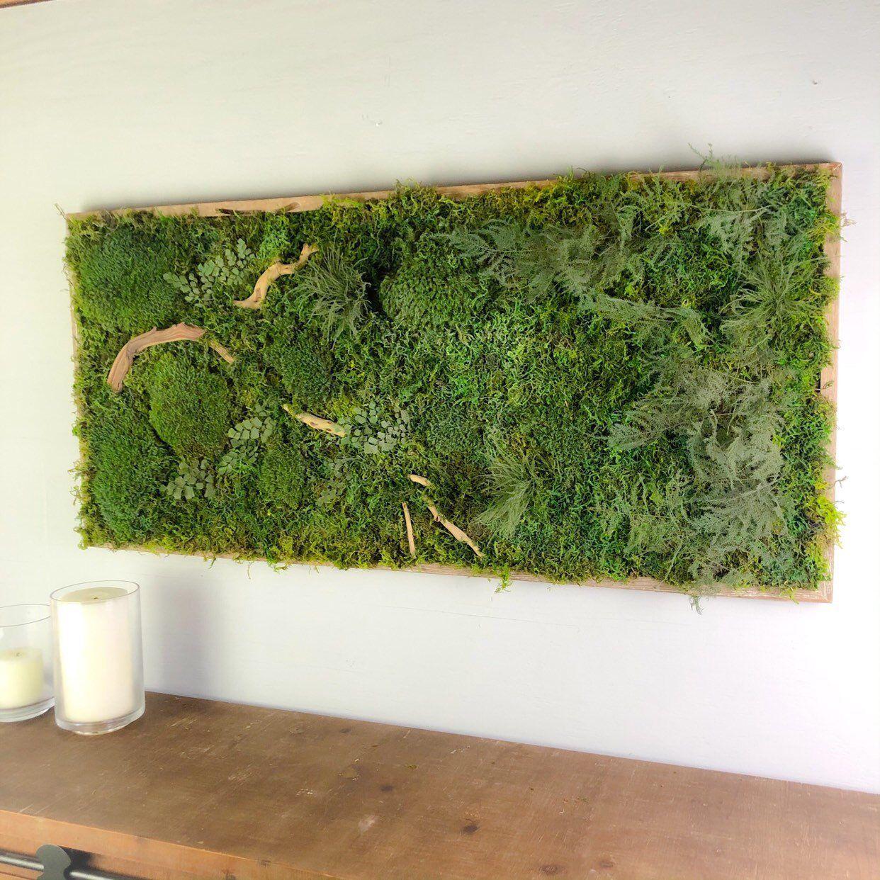 Shop Display Moss Decor Natural Wall Art Preserved Moss Art