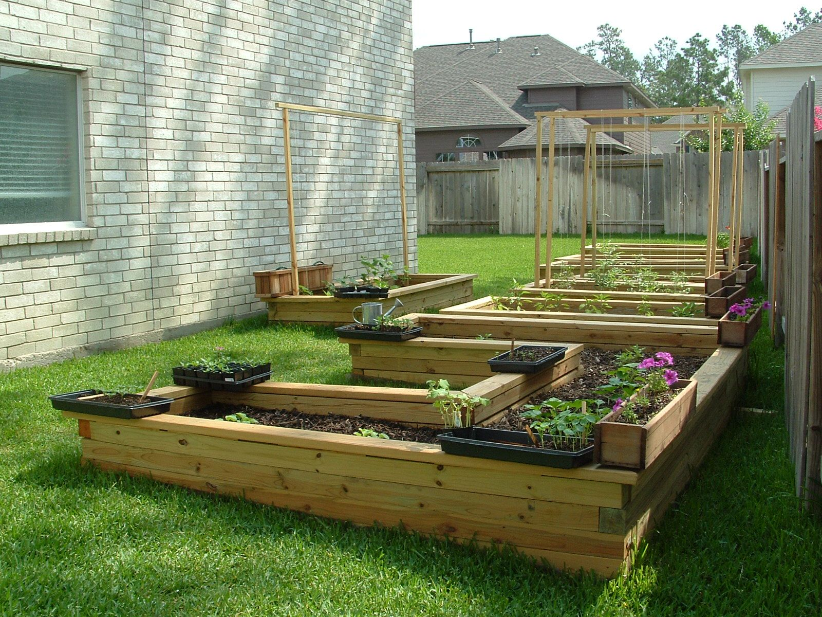 Raised vegetable gardens - Garden Beds