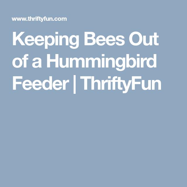 Keeping Bees Out of a Hummingbird Feeder | Humming bird ...