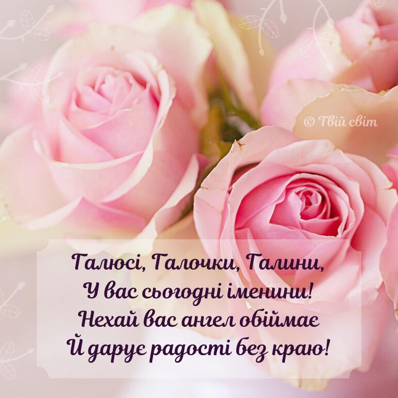 вітання #іменини #Галини #Галина #деньангела | Flowers, Rose, Photography