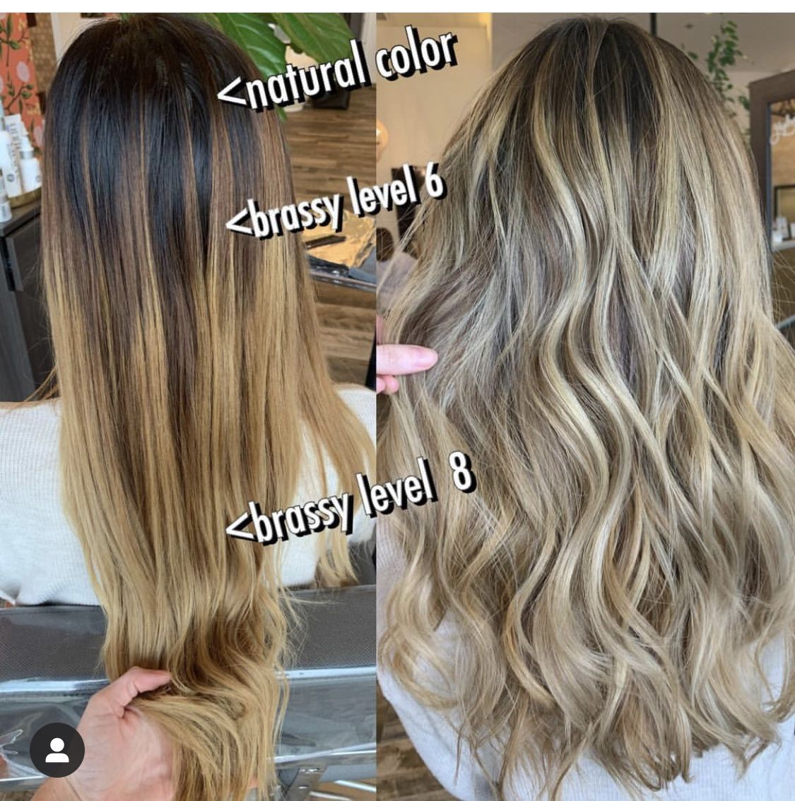 The Ultimate Answer To Why Blonde Hair Turns Yellow Or Brassy Beauty And Lifestyle Blog Ally Samouce Yellow Blonde Hair Brassy Blonde Hair Which Hair Colour
