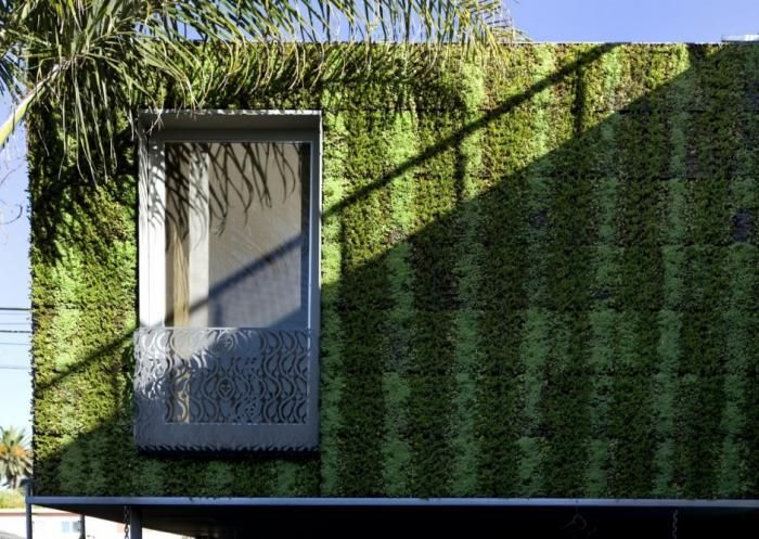 Venice Beach Bricault house with green wall vertical garden and door
