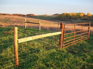 Sheep Fencing | Outside | Pinterest | Fences, Farming and Livestock