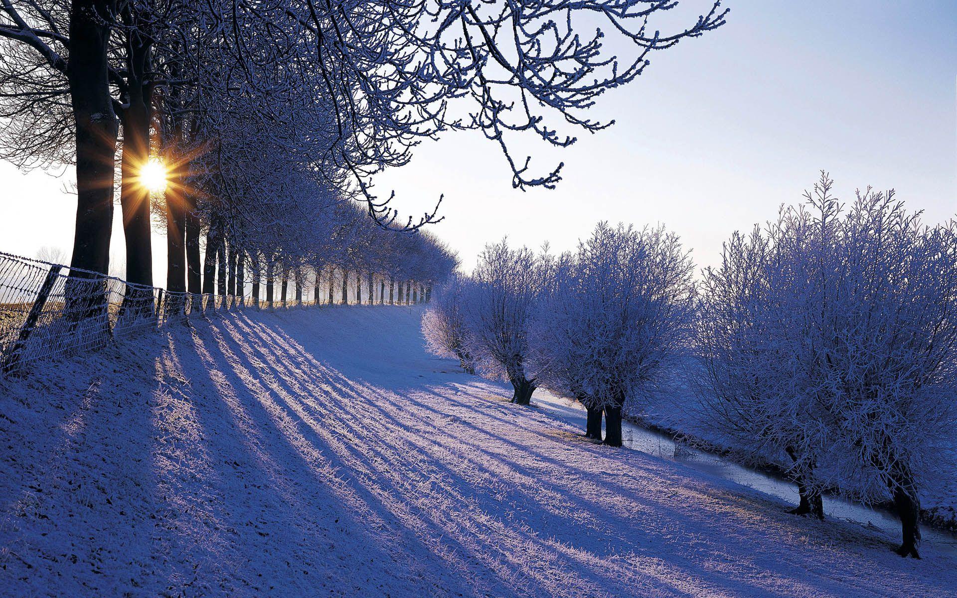 Netherlands Keren Winter Landscape Winter Scenery Winter Wallpaper