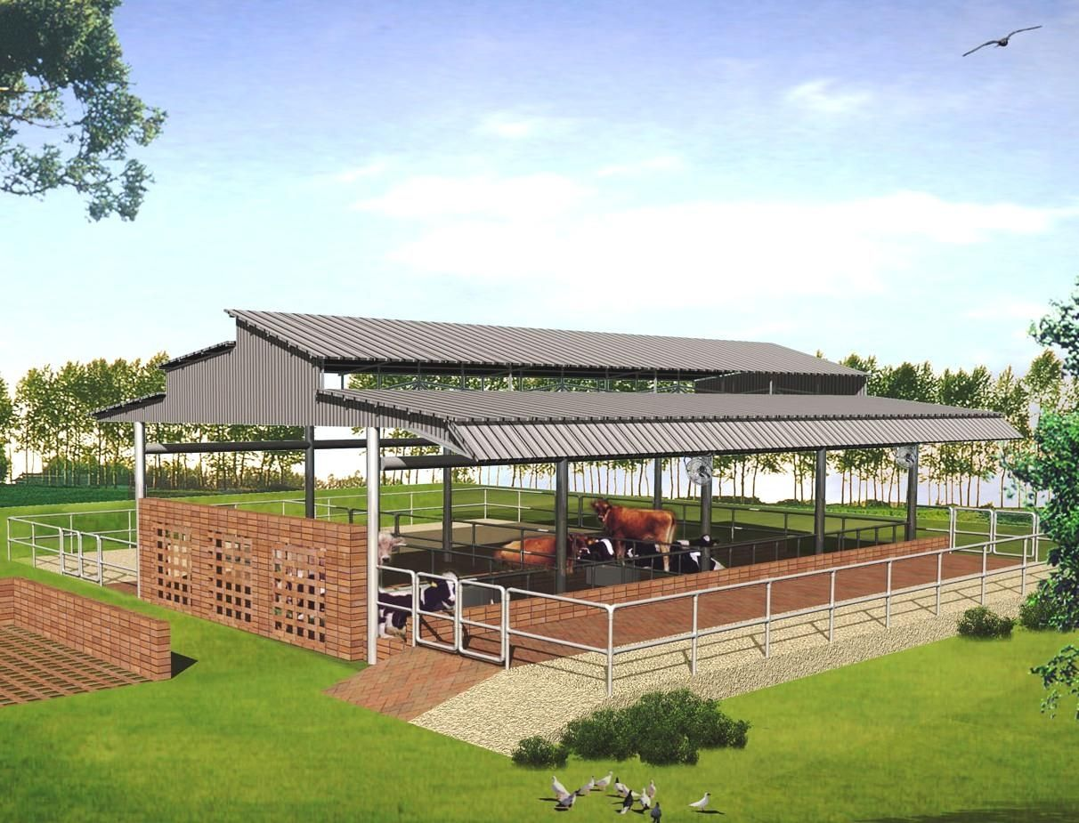 Modern cattle sheds punjab farm buildings pinterest for Farm shed ideas