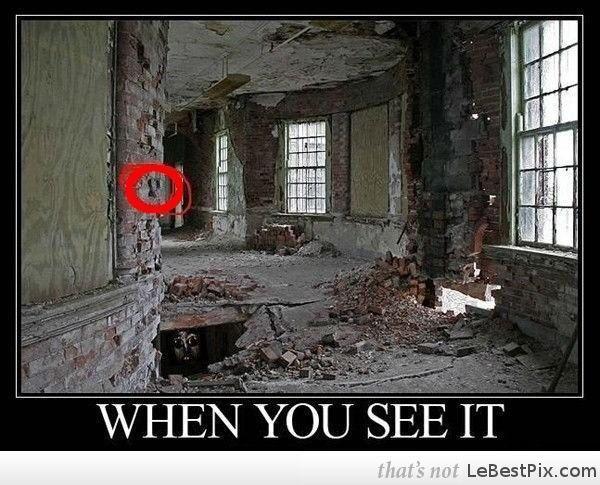 4c460da5fc770569288b281a149ed276 look in the red circle! (not) do you see it pinterest memes