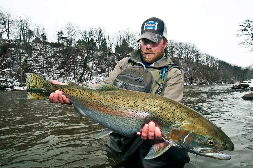 17 best images about steelhead on pinterest | trips, lake erie and, Fly Fishing Bait