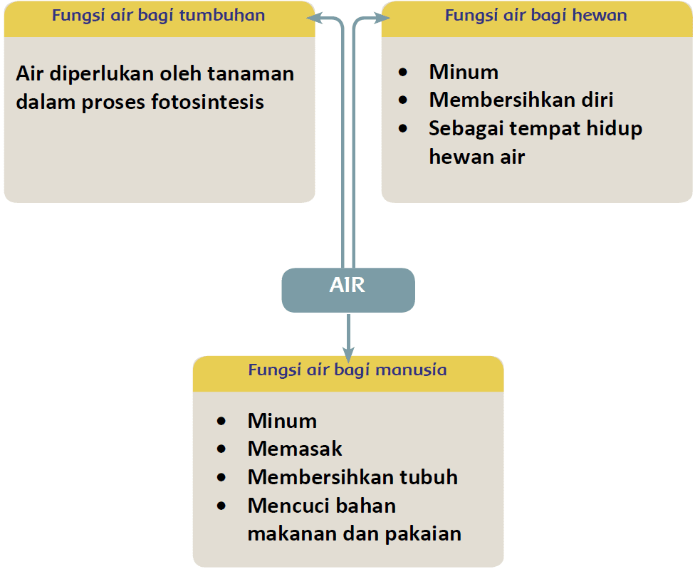 Kunci Jawaban Halaman 1 3 4 5 6 Tema 8 Kelas 5 Di 2021 Peta Pikiran Fotosintesis Buku