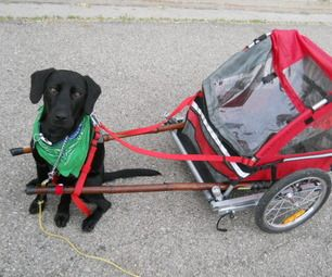Diy Dog Pull Cart Made Out Of A Folding Bicycle Trailer Dog