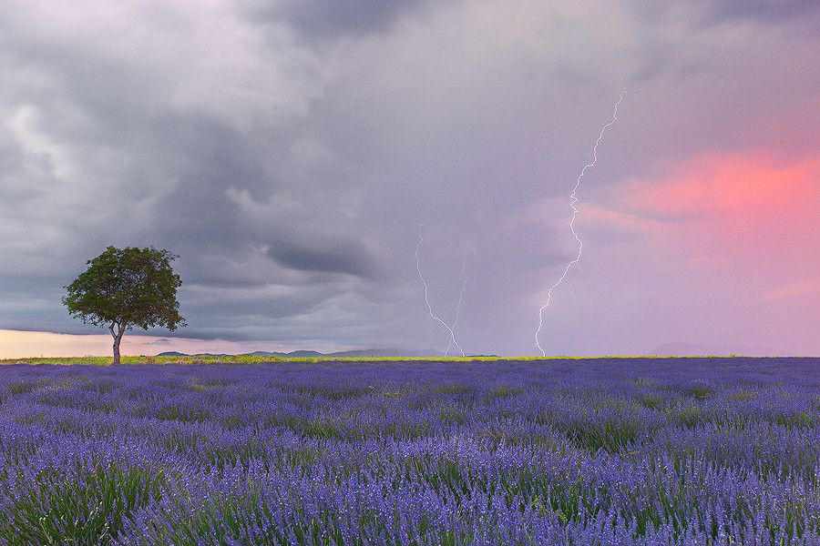 Electrical Storms by Tonio Di Stefano on 500px