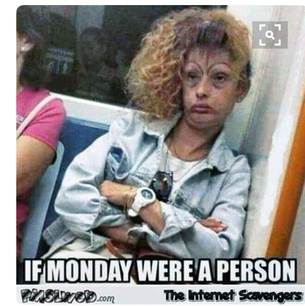 Funny Monday Work Meme : Pin by weliveincourtneync on funny pinterest scary