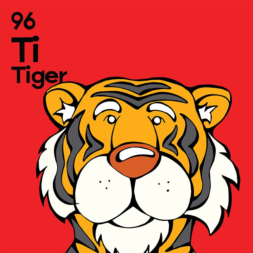 Tiger 12x12 unframed print httpsangrysquirrelshopify explore periodic table zoo animals and more urtaz Gallery