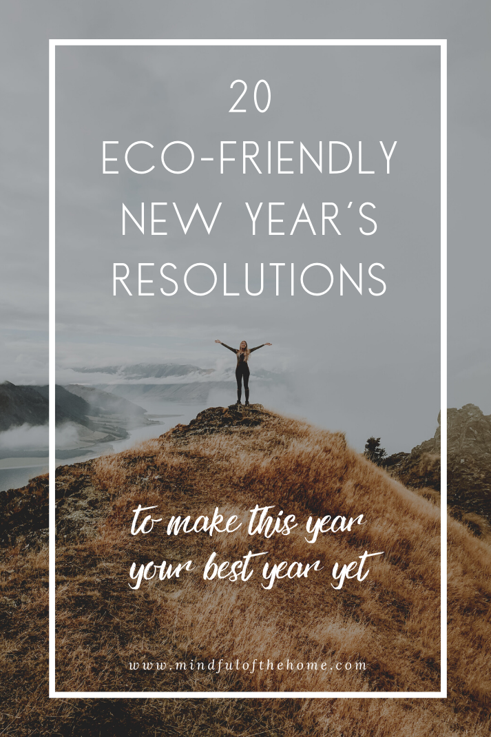 20 EcoFriendly New Years Resolutions to Help Save the Planet  Need ideas for goals in the new year Heres a list of 20 ecofriendly New Years resolutions to choose from to...