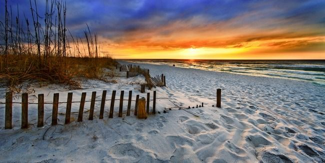 landscape sunrise panorama canvas print canvas art by eszra tanner orange beach alabama. Black Bedroom Furniture Sets. Home Design Ideas