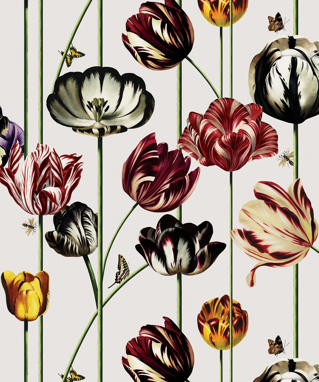 Tulipa, Large Scale Floral Wallpaper • Bold & Unique in