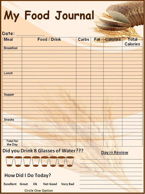 Food Log Template Printable In Excel Format  Excel Template