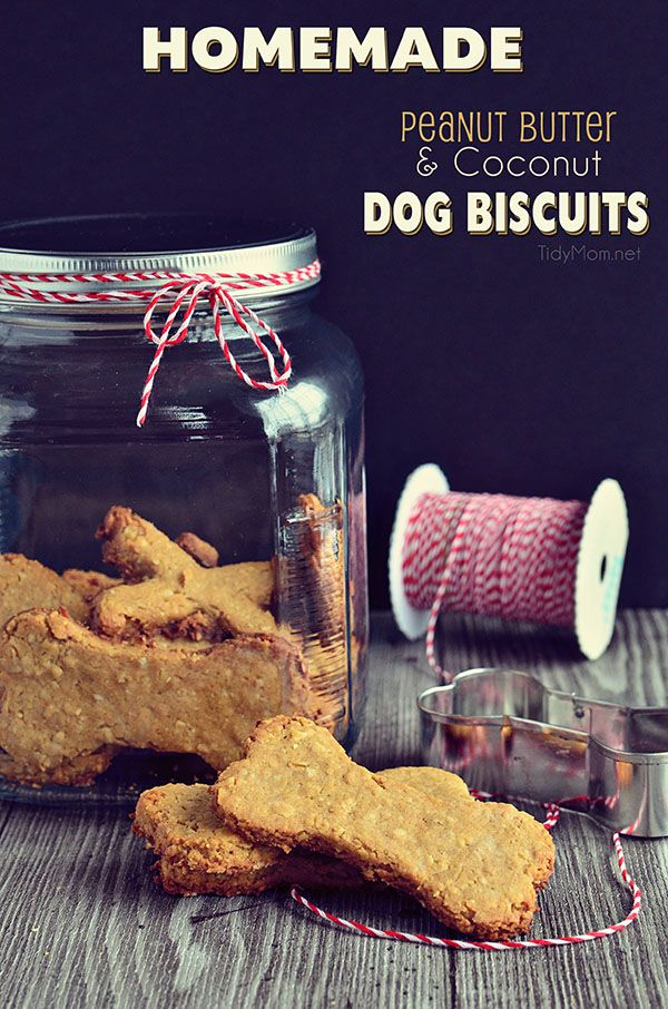 Homemade Peanut Butter Coconut Dog Biscuits recipe at TidyMom.net (I would sub the milk with almond or coco milk :)) @Cheryl Sousan | Tidymom.net