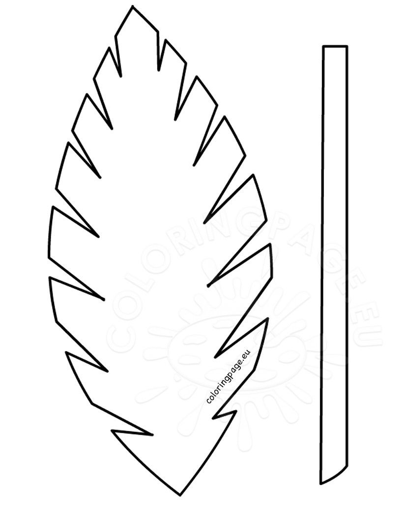 Palm Leaf Template Printable Vastuuonminun Sketch Coloring Page