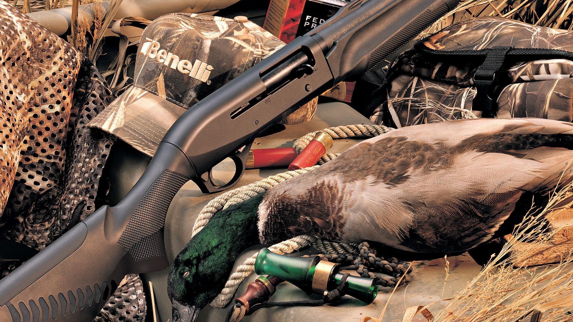Wallpaper, computer, birds, hunted, rifle, hunting