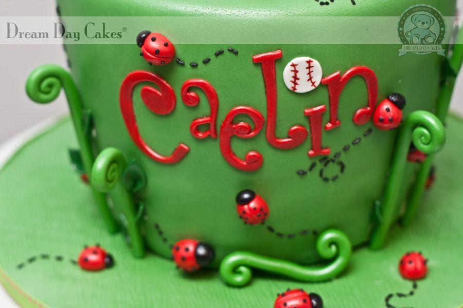Girl Softball Birthday Cakes Ladybug Birthday Cake Gainesville