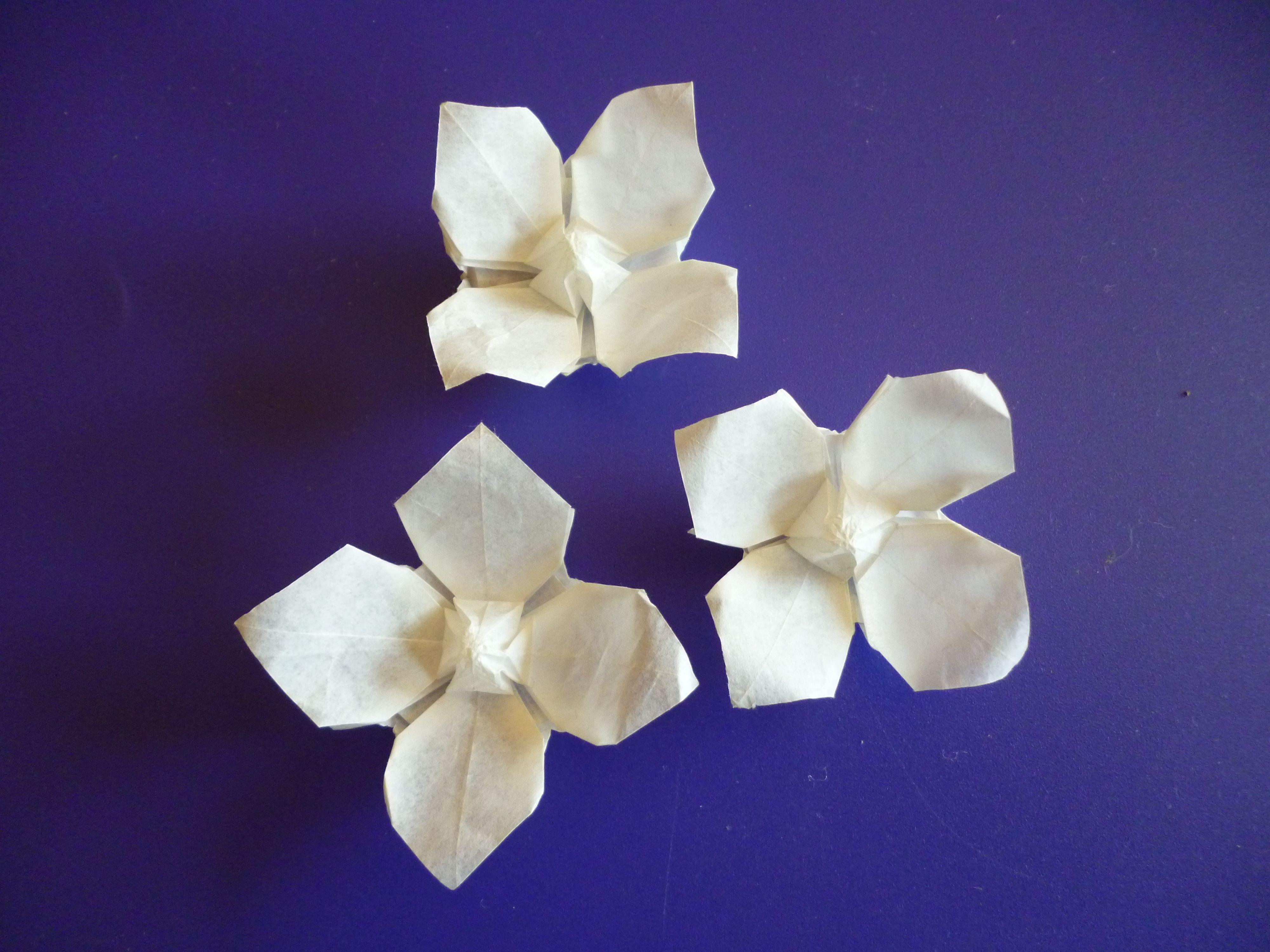 Puffed centre daisies, based on Fleur de Pavot by Lionel ... - photo#32