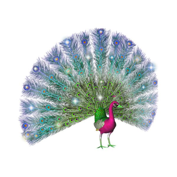 peacock sparkle.png ❤ liked on Polyvore featuring peacock 7c9c351f0